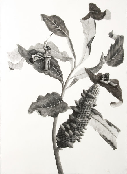 Sverre Malling · Many a blossom shall its leaves unfold #4 · 2007 · 76 x 57 cm