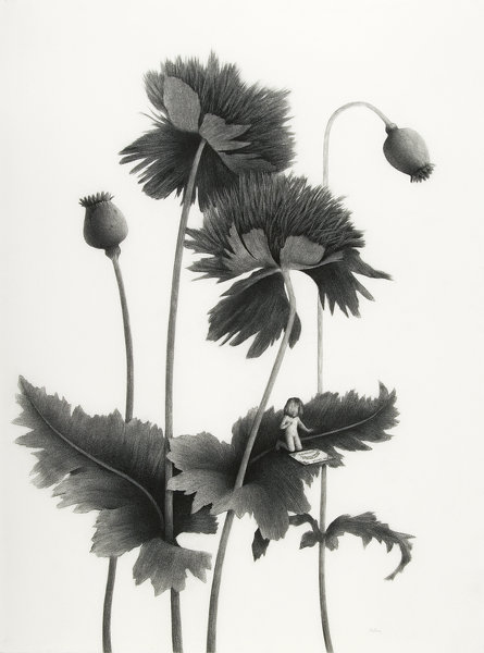 Sverre Malling · Many a blossom shall its leaves unfold #3 · 2007 · 76 x 57 cm