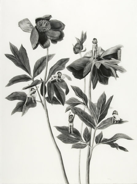 Sverre Malling · Many a blossom shall its leaves unfold #2 · 2007 · 76 x 57 cm