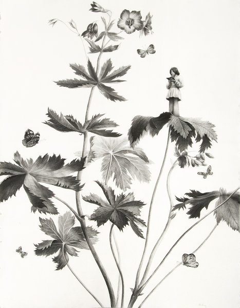 Sverre Malling · Many a blossom shall its leaves unfold #1 · 2007 · 76 x 57 cm